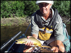 Fly Fishing the Taylor, Brown Trout