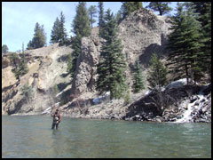 Fly Fishing for Pike, Gunnison River Guides