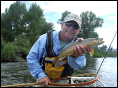 Summer Dry Fly Fishing the Gunnison River